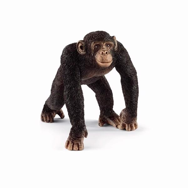Image of Chimpanse, han - Schleich (MAK-14817)